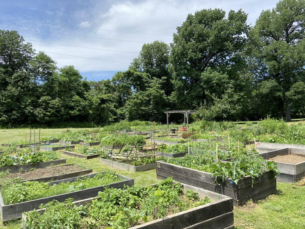 Bartram's Garden community garden